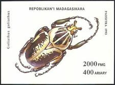 Madagascar 1993 Goliath Beetle/Insects/Beetles/Nature/Conservation 1v m/s s38