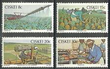 Ciskei - Ananasanbau Satz postfrisch 1982 Mi. 26-29