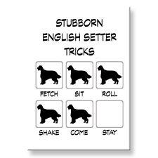 English Setter Stubborn Tricks Fridge Magnet Steel Case Funny