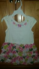 Gymboree Baby Girl Flowery Dress size 2T