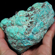 2398CT 100% Natural Sleeping Beauty Turquoise Brain Nugget Intact Speci YSTc115