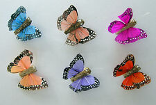 12 Mini Feather butterflies 3cm 6 assorted colours weddings flower craft, NEW