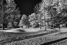 Nikon D7100 830nm Black And White Deep Contrast IR Infrared converted camera!