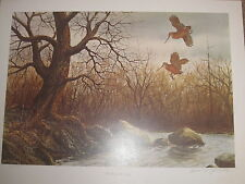 """"""" TIMBER DOODLE TWO   WOODCOCK  Print by William Tyner -"""