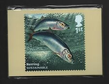 GB 2014 SUSTAINABLE FISH PHQ STAMP CARDS MINT