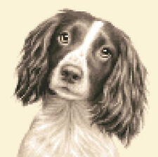 SPRINGER SPANIEL dog  - complete counted cross stitch kit