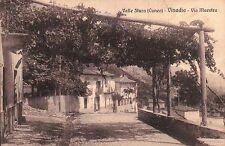 CARTOLINA DI VALLE STURA ( CUNEO ) VINADIO VIA MAESTRA C4-330