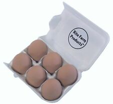 6 PACK BROWN CERAMIC DUMMY CHICKEN NESTING NEST FAKE TRAINING EGG HATCHING CRAFT