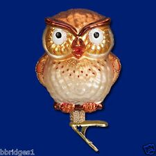 *Hootie Cutie* Owl (18106) Old World Christmas Glass Ornament- NEW