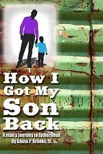 How I Got My Son Back : A Man's Journey to Fatherhood by Glenn Brooks (2014,...