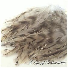 Strung Badger saddle grizzly rooster feathers per 10cm 7-12cm craft/flyfishing