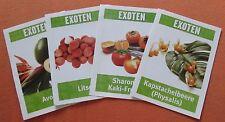 4 Stück Exoten Rezeptkarten Rezepte Werbung Kochen