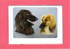 Afghan Hounds Greeting Card / Notelet (Blank inside) #610101