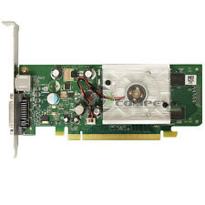 ASUS Nvidia GeForce 8400GS 256MB PCIe x16 DVI Video Graphics Card HP 445743-001