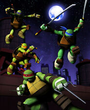 Cartoon TV Poster Teenage Mutant Ninja Turtles Moving At Night 32X24 Poster