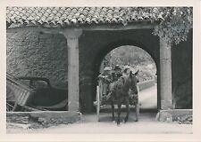 ÎLE DE MAJORQUE c. 1935 - Arrivée en Charette Monastère de Lluc  Espagne - P 511