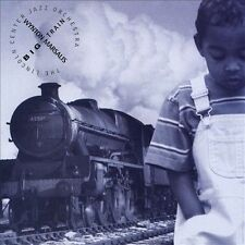 BIG TRAIN NEW CD