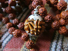 Energized Original JAVA 1 one Ek Mukhi Face Rudraksha Bead, 108 5 Mukhi 6mm Mala