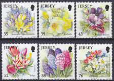Jersey 2009 Seasonal Flowers (4th Series) - Spring Set UM SG1427-32 Cat £9.00