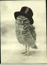 A5 Print – Owl Wearing a Monocle & Top Hat (Picture Poster Funny Animal Art)