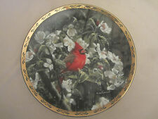 CARDINAL collector plate EARLY MORNING RAIN Alan Sakhavarz BIRD Melodies in Mist