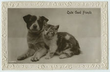 1920s Vintage Cute DOG Cute CAT Quite Good Friends antique photo postcard