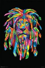 LION - RASTAFARI POSTER - 24x36 TYE DYE SMOKING WEED HEADPHONES 10910