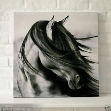 black white art horse HUGE OIL PAINTING MODERN ABSTRACT WALL DECOR ART CANVAS