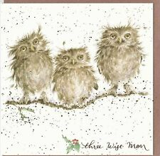 "Country Set Christmas Greeting Card Wrendale Designs  ""Three Wise Men"" Owls"
