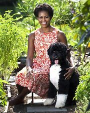 """FIRST LADY MICHELLE OBAMA WITH FAMILY DOG """"BO"""" - 8X10 PHOTO (ZY-731)"""