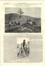 1894 Taladro Eléctrico McKay superior terminal Pinerolo Cable de manera