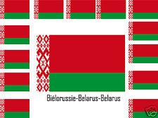 Assortiment lot de10 autocollants Vinyle stickers drapeau Biélorussie-Belarus
