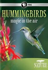 Nature: Hummingbirds: Magic in the Air (DVD, 2014)