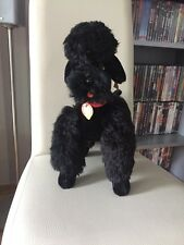 Steiff Hund Pudel Snobby schwarz mit KFS 5335,06 - Rarität 35 cm