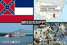 SOUVENIR FRIDGE MAGNET of THE STATE OF MISSISSIPPI USA