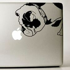 English Bulldog Large Decal - NEW (IB002EBD) FREE SHIPPING - Mailed next day