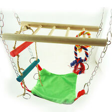 Hamster Cage Hanging Climbing Frame with Ladder Hammock & Loop Toy New