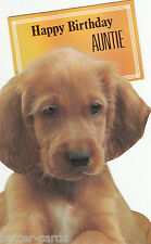Vintage Happy Birthday Auntie 1970s Die Cut Greeting Card ~ Aunty ~ Irish Setter