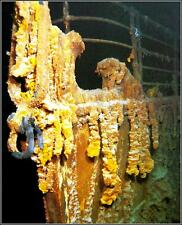 Photo: Titanic's Bow On The Sea Floor: Recent Close Port Side View