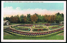 Springfield News Company Hot House And Flower Beds Postcard