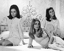 Patty Duke & Sharon Tate & Barbara Parkins 8 x 10 GLOSSY Photo Picture