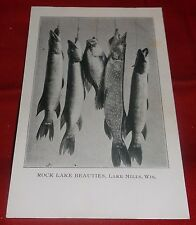"Antique Postcard UDB ""Rock Lake Beauties"" Fish Lake Mills Wisconsin - Unposted"
