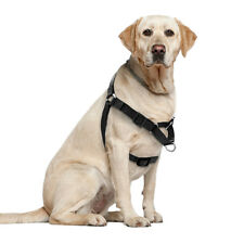 26-37'' Black No Pull Nylon Easy Walking Dog Harnesses Strap Vest for Large Dogs