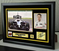 "Stoffel Vandoorne F1 McLaren 2016 Framed Canvas Print Signed.""Great Gift"""