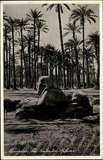 Memphis Ägypten Egypt ~1930/40 Alabaster Sphinx Denkmal Statue Palmen ungelaufen