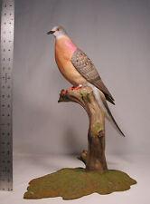 Extinct Passenger Pigeon Original Wood Carving/Birdhug