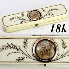 RARE Antiqeu 1700s French Toothpick or Patch Box, Etui, 18k Gold Pique, Hair Art