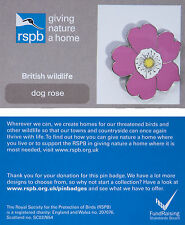 RSPB Pin Badge | Dog Rose | GNaH backing card [00941]