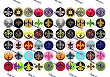 "60 Precut 1"" FLEUR DE LIS Bottle cap Images Set A"