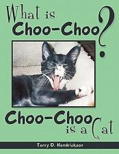 What is Choo-Choo?: Choo Choo Is A Cat